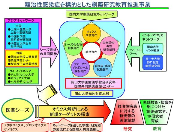このページの先頭へ 岡山大学 岡山大学薬学部 岡山大学大学院医歯薬学総... プロジェクト概要|